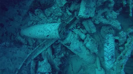 ss : wreck Thistlegorm, Red Sea, Sharm el Sheikh, Egypt, Sinai