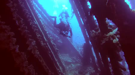 ss : Male scuba diver inside the wreck of the SS Carnatic, Red Sea, Egypt Stock Footage