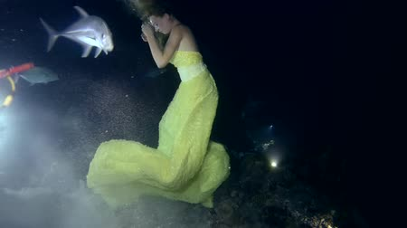 podwodny swiat : Young beautiful woman in yellow dress posing underwater with Tawny nurse sharks (Nebrius ferrugineus), night shooting, Indian Ocean, Maldives Wideo