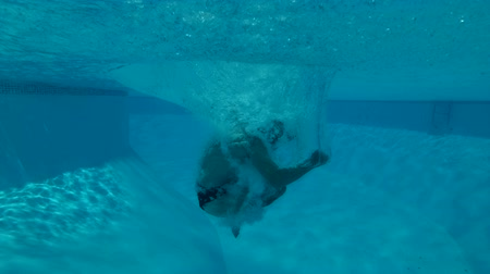 deceleration : a man jumps into the pool - underwater shot Stock Footage