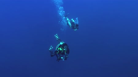 follow shot : Two male scuba divers swims in the deep blue water, Indian Ocean, Fuvahmulah island, Maldives