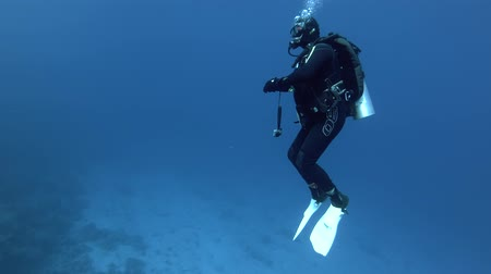 yüzgeçler : Male scuba diver slowly swims in the blue water at the safety stop and looks at the computer Stok Video