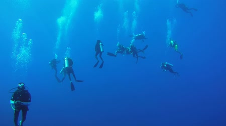 deriva : Large group of scuba divers hanging in blue water at safety stop - Indian Ocean, Fuvahmulah island, Maldives, Asia