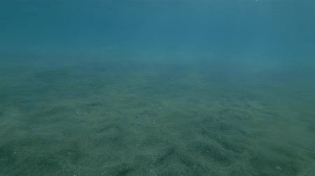 sways : Tidal wave raises sand from the bottom of the sea (Underwater shot, 4K  60fps)