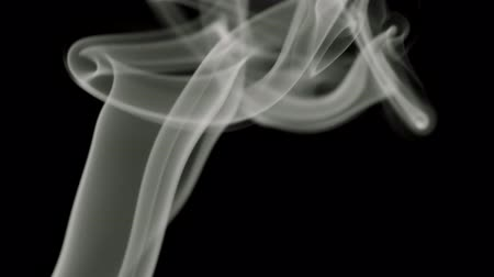 dumanlı : Black and white smoke blowing from bottom to top Stok Video