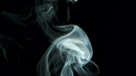 upward movement : Thin trickle smoke rising graceful twists upward. Cigar smoke blowing from bottom to top. Natural color tobacco smoke. For 4k - 60fps