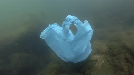 Plastic pollution - a discarded plastic bag drifting over seabed with algae. Underwater shot
