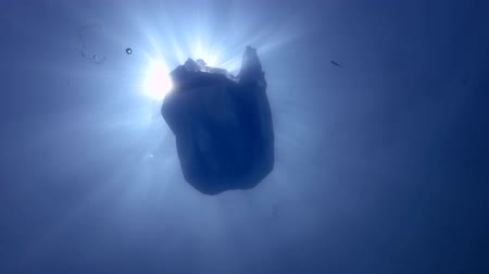 aşağıda : Blue plastic bag swims underwater. Underwater shot, Low-angle shot, backlight