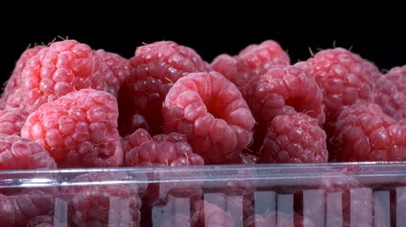 fruity garden : Rotate of fresh raspberries in disposable plastic food pack on black background. Close-up, Camera rotation 360 degrees. European raspberry or red raspberry (Rubus idaeus) Stock Footage
