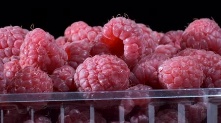 rubus occidentalis : Rotate of fresh raspberries in disposable plastic food pack on black background. Close-up, Camera rotation 360 degrees. European raspberry or red raspberry (Rubus idaeus) Stock Footage