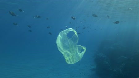 çevre kirliliği : Slow motion, yellow plastic bag slowly swims with school of tropical fish near a coral reef in blue water in sunlight. Underwater plastic pollution of the oceans. Stok Video