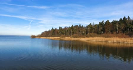 Scenic View Of Idyllic Lake Near Forest 4K Stock Footage