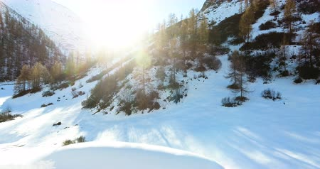 Scenic View Of Snow Covered Landscape With Trees And Mountain 4K Stock Footage