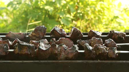 costelas : The meat on the skewers.Picnic. Stock Footage