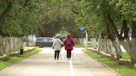 all ages : Nordic walking. Nordic walking outdoor activities for all ages. Stock Footage