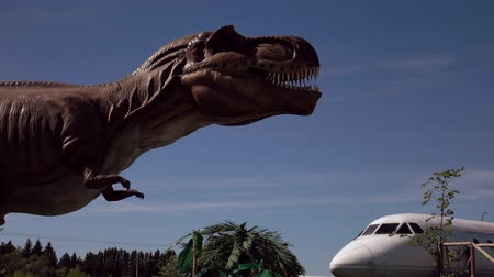 nagy : Russia. Vologda - 20 may 2018. Park with animals of the Jurassic period. The dinosaur and the plane of a film. Stock mozgókép