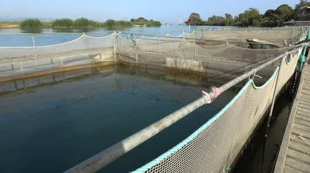 industrial fishing : The farm for breeding fish.fish farming,