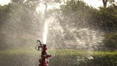 sprayer : Watering The Garden. Sprinkler irrigation of the lawn. Slow motion. Stock Footage