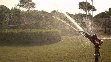 sucho : Watering The Garden. Sprinkler irrigation of the lawn. Slow motion. Dostupné videozáznamy