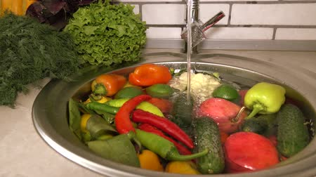 okurka : Fresh vegetables and fruits in the sink under running water, tomatoes and cucumbers, pepper and dill large. Cleaning vegetables from pollution and toxic chemicals.