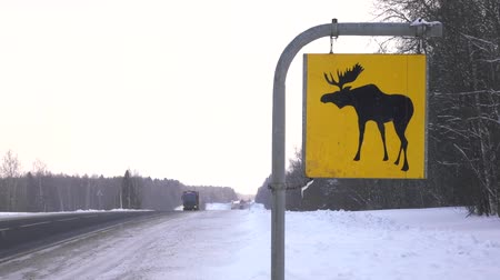 sob : Road sign. Moose are wild animals