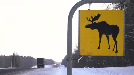alce : Road sign. Moose are wild animals