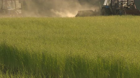 dag van de arbeid : Flax field during harvest at summer day. Agricultural machinery in operation. Stockvideo