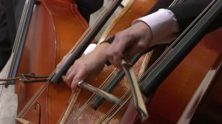 виолончель : Symphony orchestra cello plays . Close up.