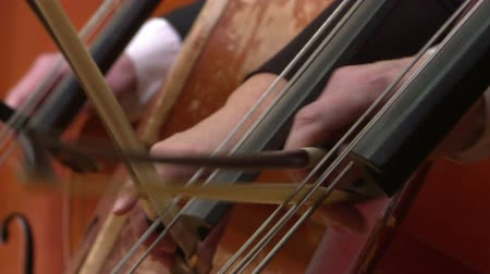 cselló : Symphony orchestra cello plays . Close up.