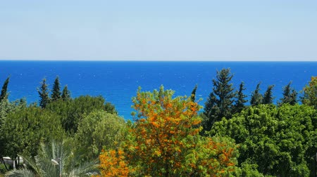 exotikou : landscape of bright blue sea and different green trees,windy weather, clear blue sky, summer day
