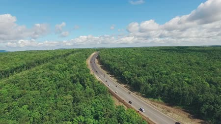 çevre : modern highway through dense deciduous forest in Russia, aerial view