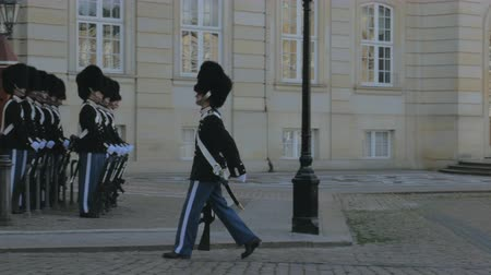 regal : Copenhagen, Denmark - OCT, 2017: two soldiers of Danish Royal Guard is changing at Amalienborg Palace
