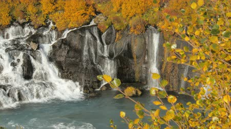 местность : famous and picturesque waterfalls Hraunfossar in western Iceland in sunny autumn weather in fall Стоковые видеозаписи