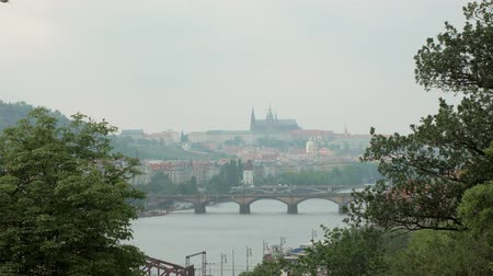 prag : beautiful view on Prague city, Vltava river and bridges, trees branches are in sides Stok Video
