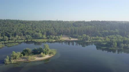 camera is flying over amazing calm river and coast with forest and high trees