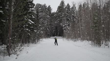 the skier skates in the woods, through the trees
