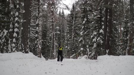middle age : the skier skates in the woods, through the trees