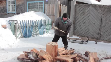 Woodcutter cuts the tree with an ax, the chips are flying Stock mozgókép