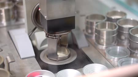 chasis : Alemania. Fanuc Robot LR Mate Archivo de Video