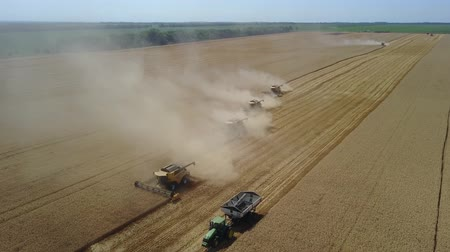 hozam : Fantastic drone shot harvesters which are going for harvesting grains of wheat Stock mozgókép