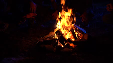 primeval : Four men sit near the fire at night in moonlight warm their hands and tell scary stories 100 fps Slow Motion