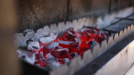 coals : Coals burning in the brazier for barbecue