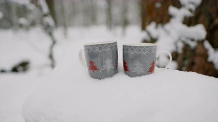baita : Two cups of hot tea, coffee or hot chocolate in the snow. close-up, 4к. Filmati Stock