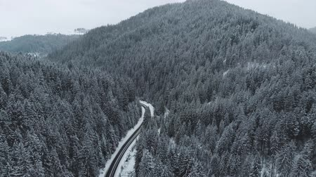 грузовики : Winter mountain road surrounded by snowy trees, aerial view. Стоковые видеозаписи
