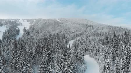 Winter landscape in the mountains, video from a drone 4k. Stok Video