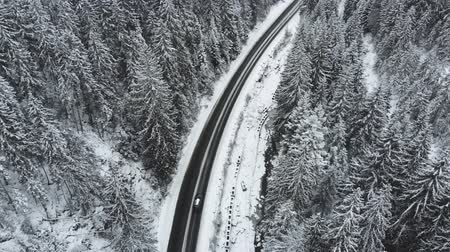 Winter mountain road surrounded by snowy trees, aerial view. Stok Video