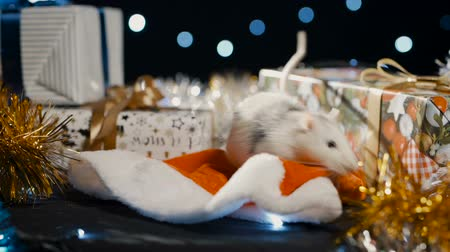 astroloji : White metal rat, symbol of 2020, against the background of a garland, close-up Stok Video