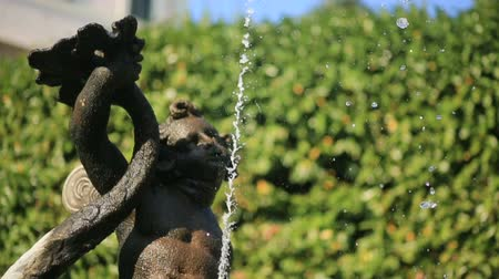 triton : Fountain With Sculpture Close up Stock Footage