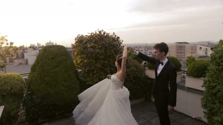 viennese : Fragile wedding couple dances on the roof. Paris on background