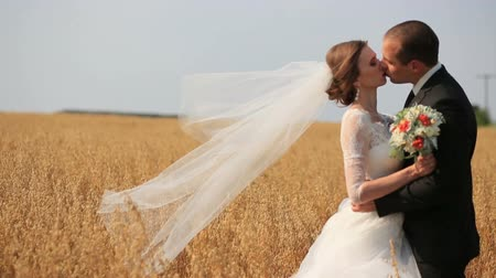 держит : Groom tenderly kissing his beautiful bride while on yellow wheat field